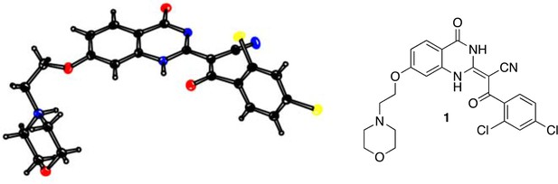 Chemical structure-guided design of dynapyrazoles, cell