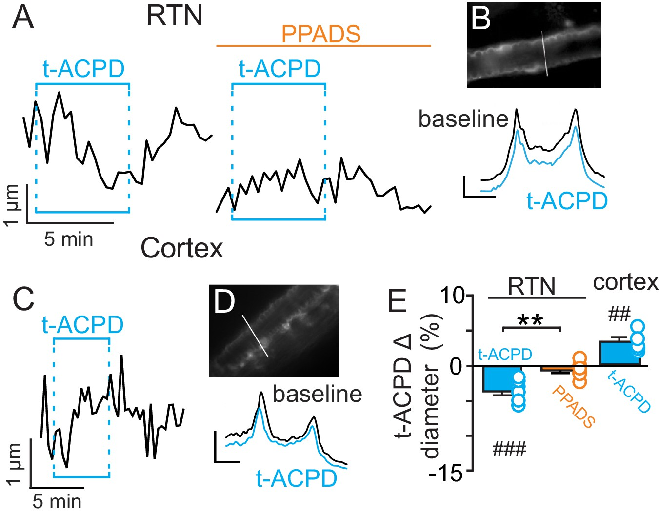 Purinergic Regulation Of Vascular Tone In The Retrotrapezoid Nucleus Instrument Air Dryer Symbol Additionally Relay Schematic T Acpd Mediated Astrocyte Activation Has Opposite Effects On Arteriole Diameter Rtn And Cortex
