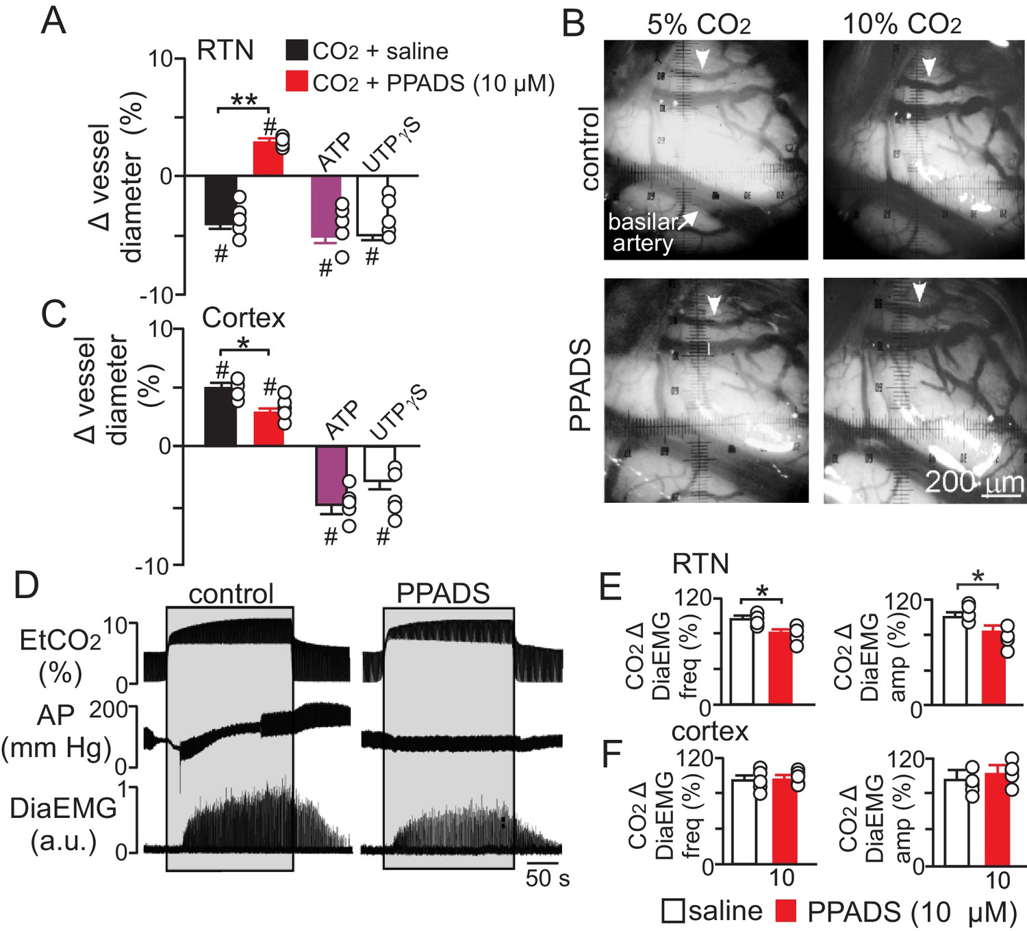 Purinergic Regulation Of Vascular Tone In The Retrotrapezoid Nucleus Instrument Air Dryer Symbol Additionally Relay Schematic Signaling Opposes Co2 H Dilation Vms Pial Vessels Vivo And Contributes To Ventilatory Response
