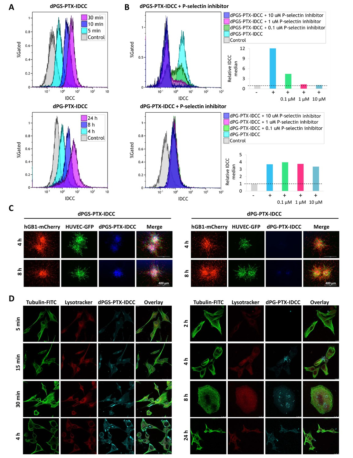 Co-targeting the tumor endothelium and P-selectin-expressing