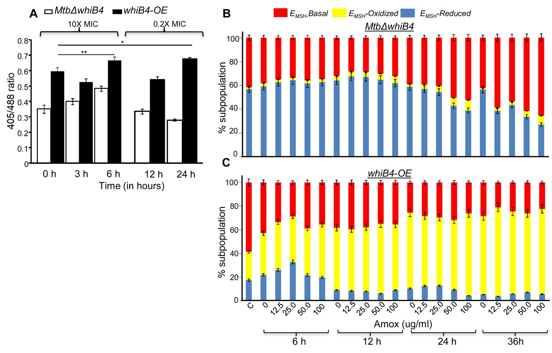 Efficacy of β-lactam/β-lactamase inhibitor combination is linked to