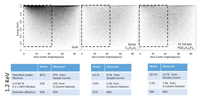 Enhanced FIB-SEM systems for large-volume 3D imaging | eLife