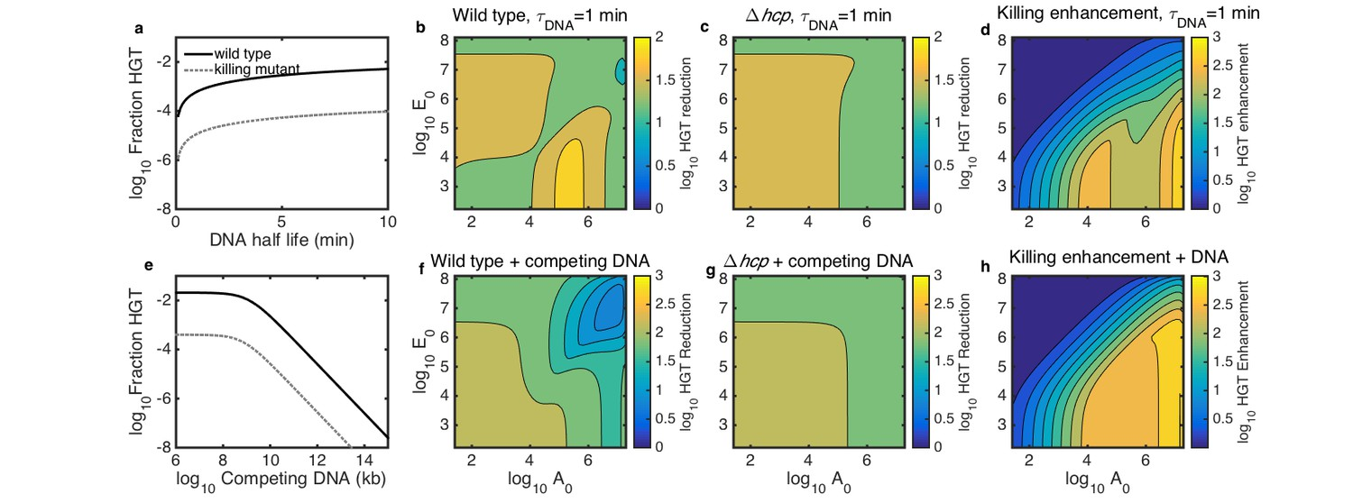 Inter-species population dynamics enhance microbial