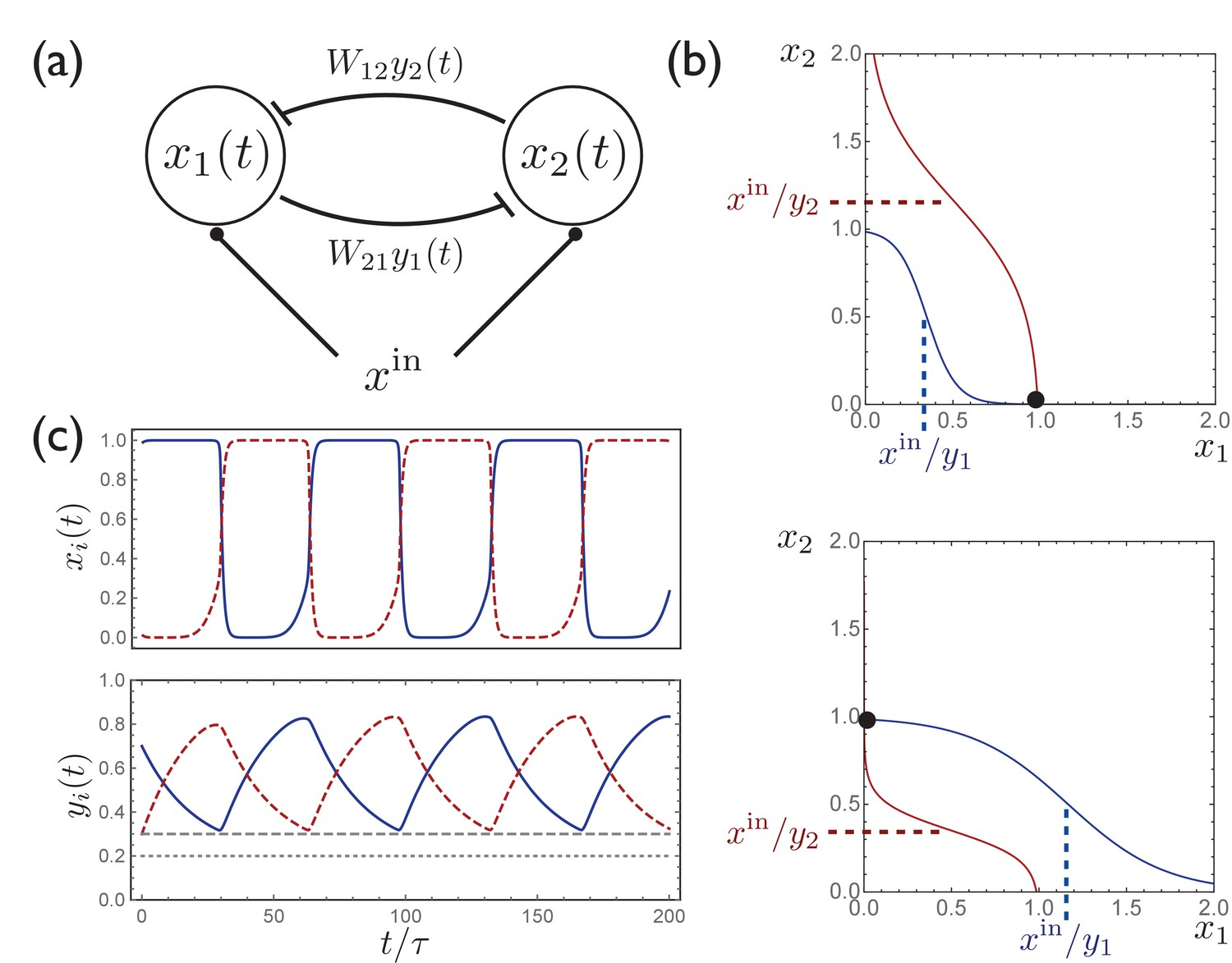 Learning Multiple Variable Speed Sequences In Striatum Via Cortical Time Delay Circuits Activity A Simple Circuit With Two Units Exhibits Switching