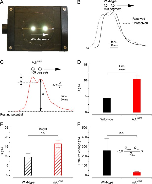 Microsaccadic sampling of moving image information provides ... on