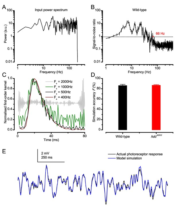 Figures and data in Microsaccadic sampling of moving image