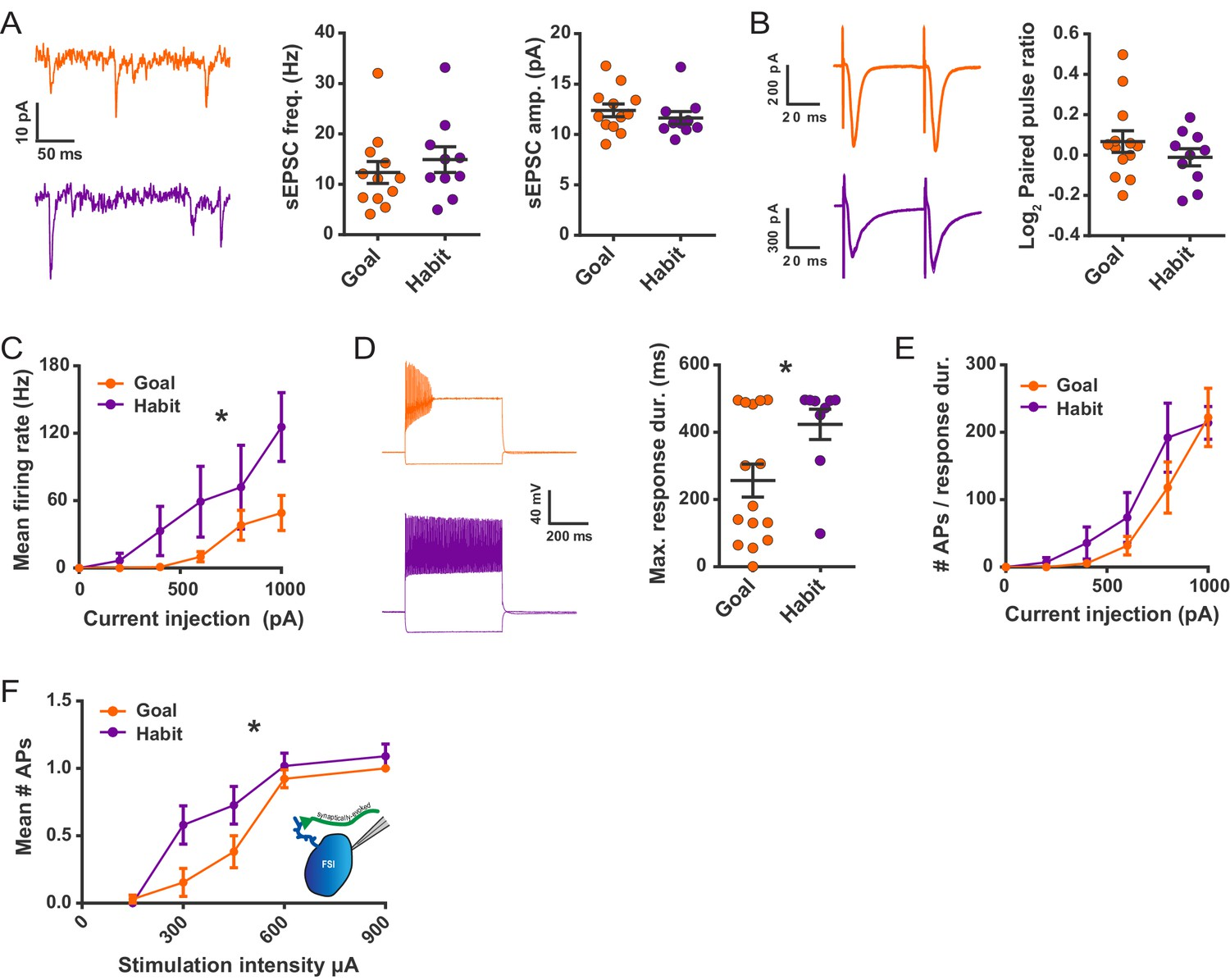 Striatal Fast Spiking Interneurons Selectively Modulate Circuit Ibanez At100 Wiring Diagram Habit Formation Enhances Sustained High Frequency Firing And Cortically Evoked Action Potential In Dls Fsis Ex Vivo