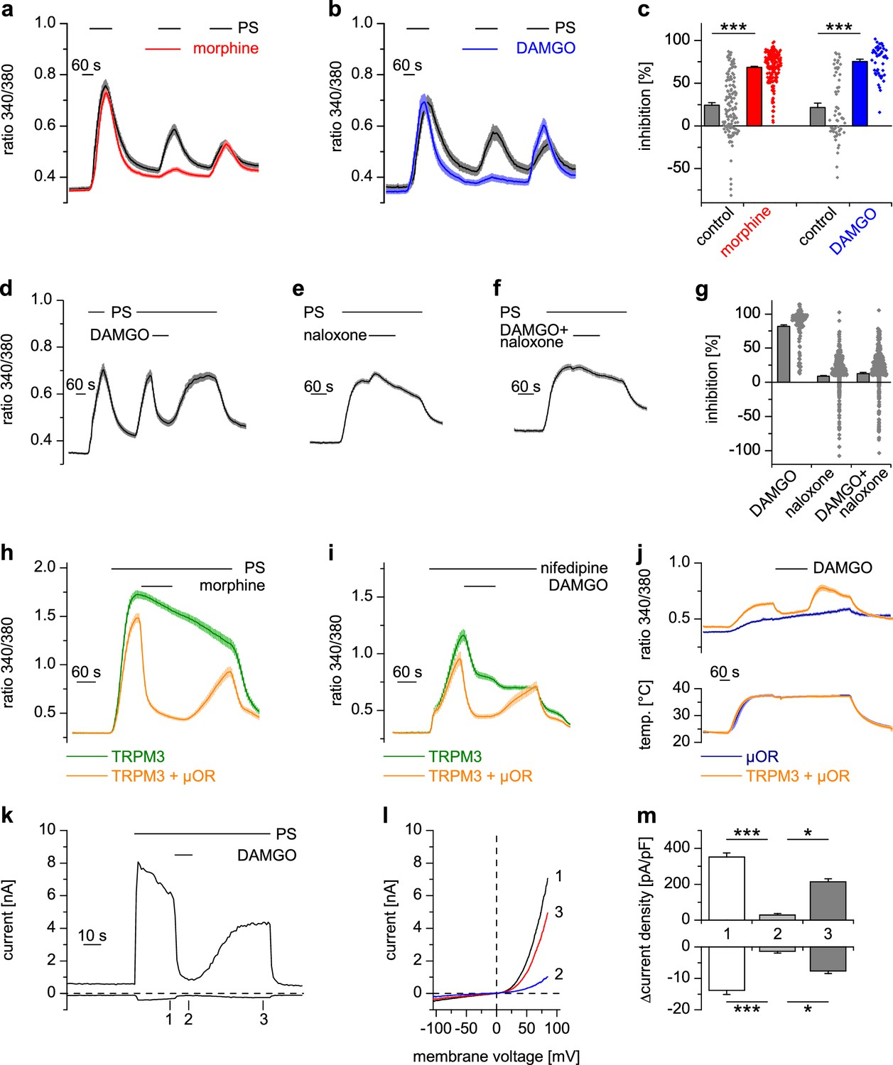 Anti Nociceptive Action Of Peripheral Mu Opioid Receptors By G Beta Op Amp Voltage Follower Saturation Electrical Engineering Stack Activated Ors Inhibit Trpm3 Induced Ca2 Signals In Somatosensory Neurons And An Overexpression System