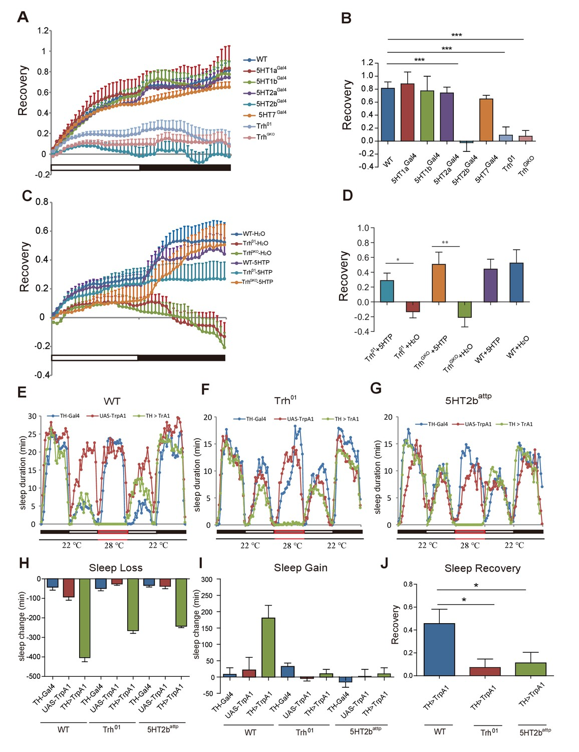 Sleep Homeostasis Regulated By 5ht2b Receptor In A Small Subset Of Suzuki Gn 125 Electric Circet Pdf Trh And 5 Ht Mutants
