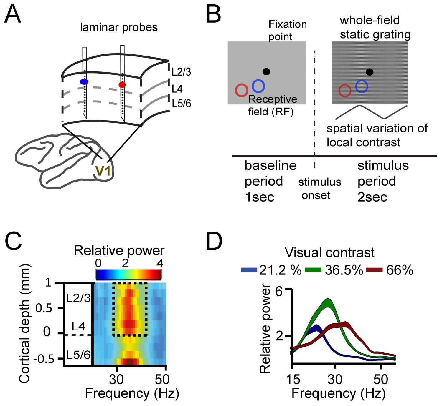 A quantitative theory of gamma synchronization in macaque V1