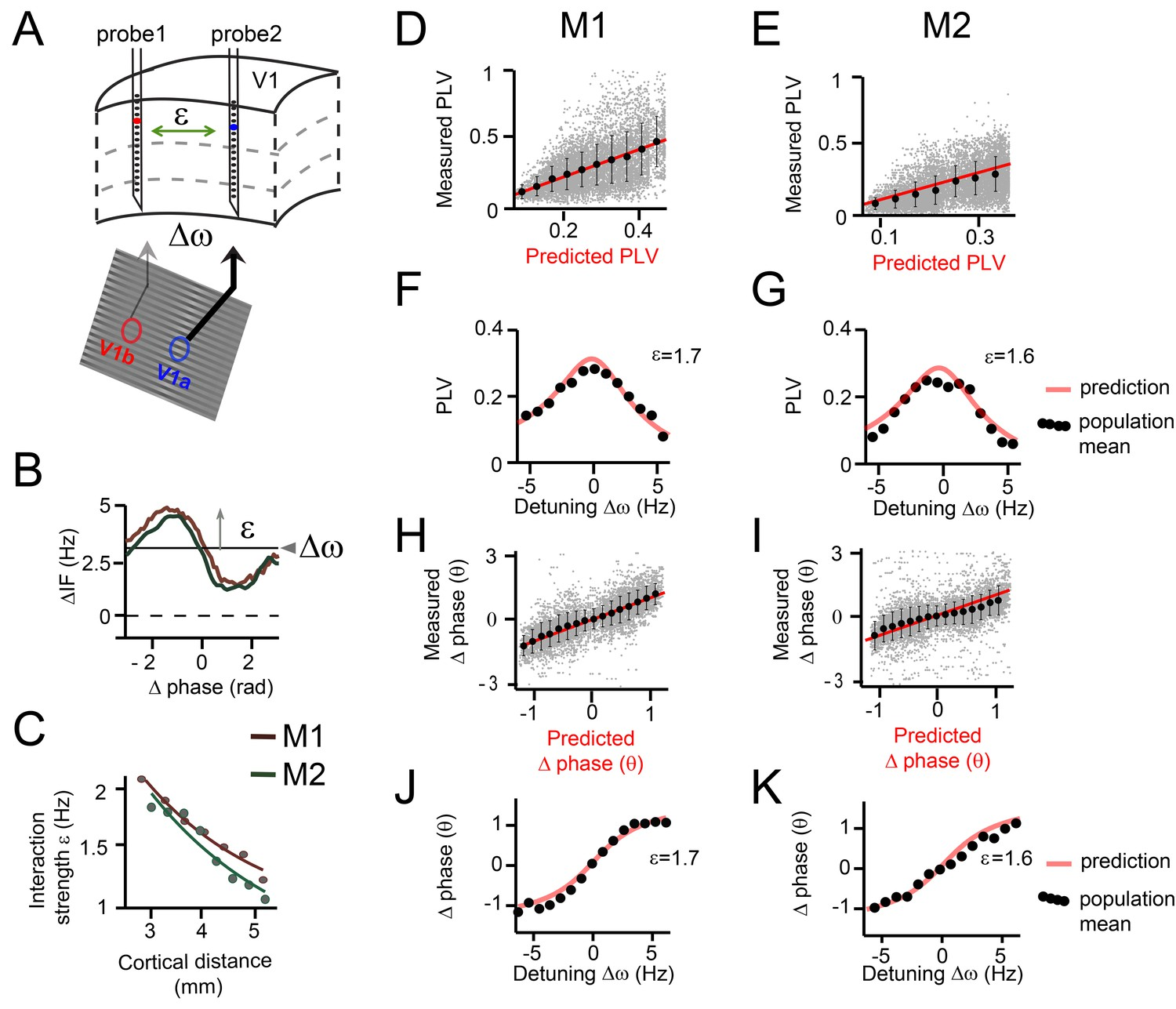 A Quantitative Theory Of Gamma Synchronization In Macaque V1 Elife