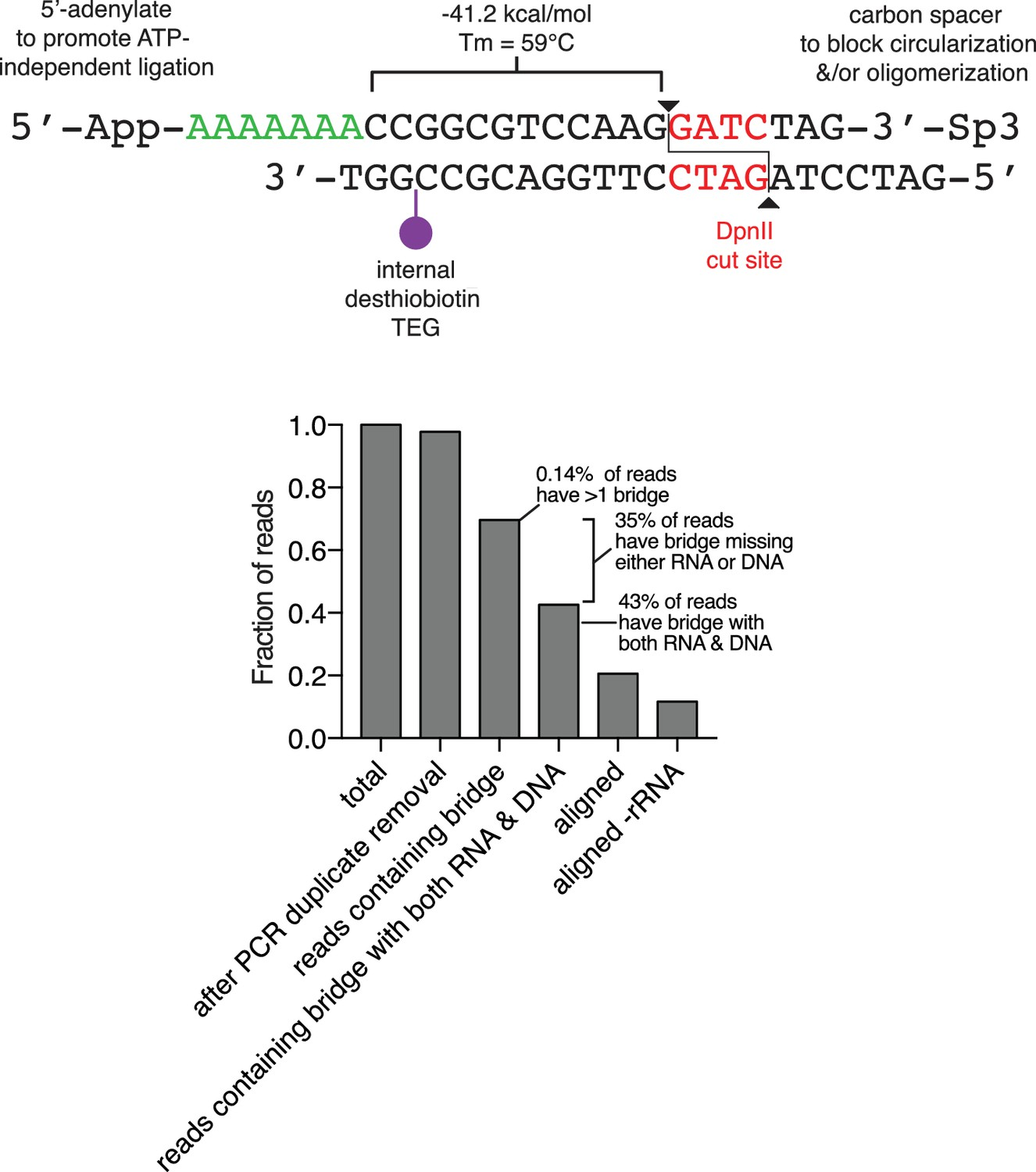 Chromatin Associated Rna Sequencing Char Seq Maps Genome Wide Bridge Balance Indicator Circuit Diagram Diagrams Free Of The Oligonucleotide And Efficiency Ligation Capture