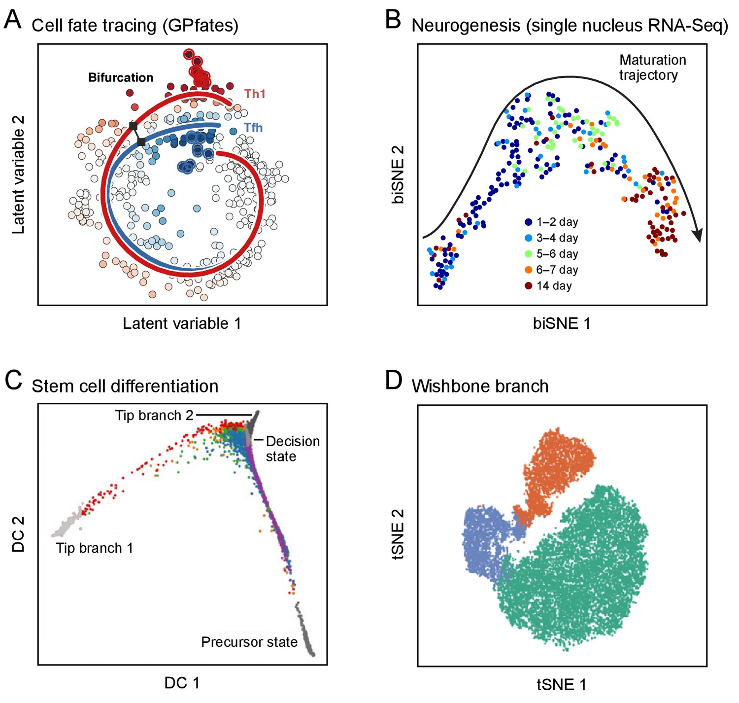Science Forum: The Human Cell Atlas | eLife