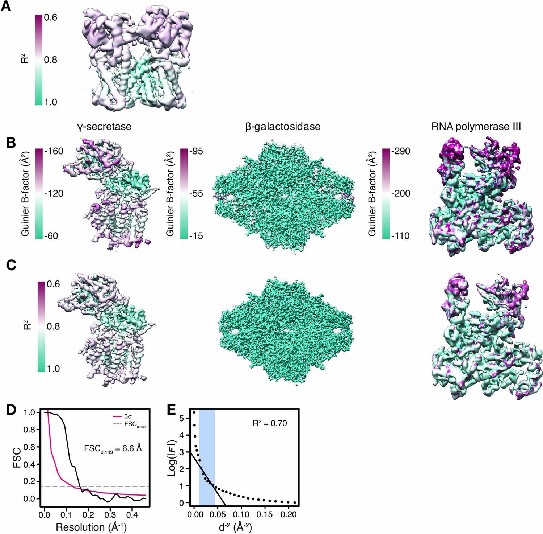 Model-based local density sharpening of cryo-EM maps | eLife