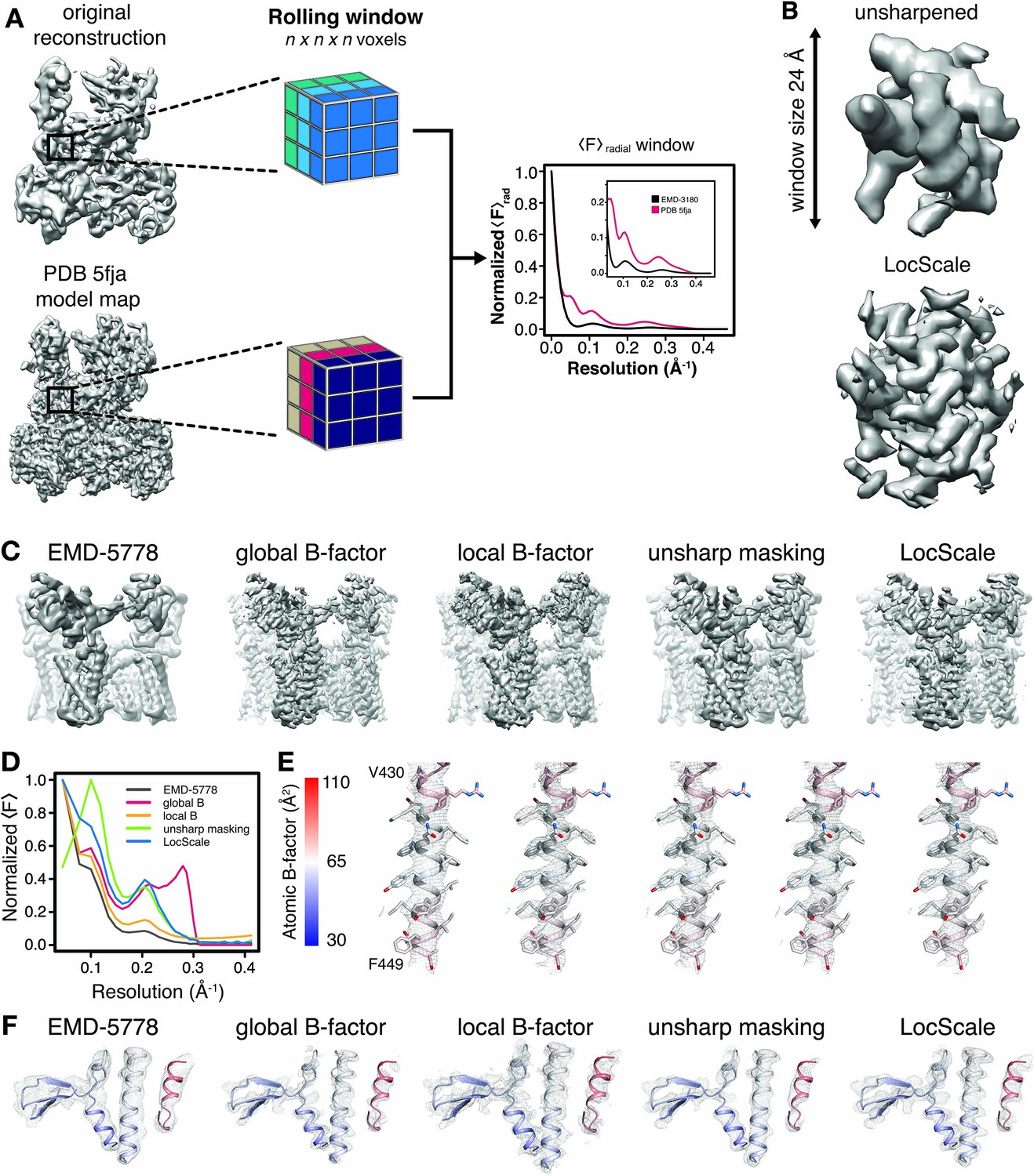 Model-based local density sharpening of cryo-EM maps | eLife