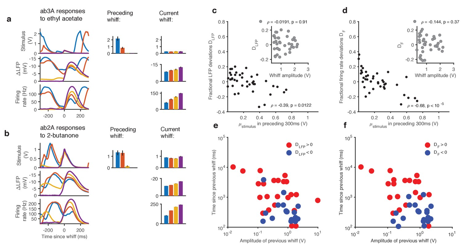 Adaptation And Saturation Modulate ORN Responses To Broadly Distributed Naturalistic Stimuli