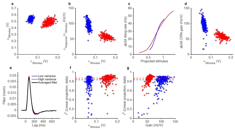 Variance Gain Control In Gaussian Stimuli