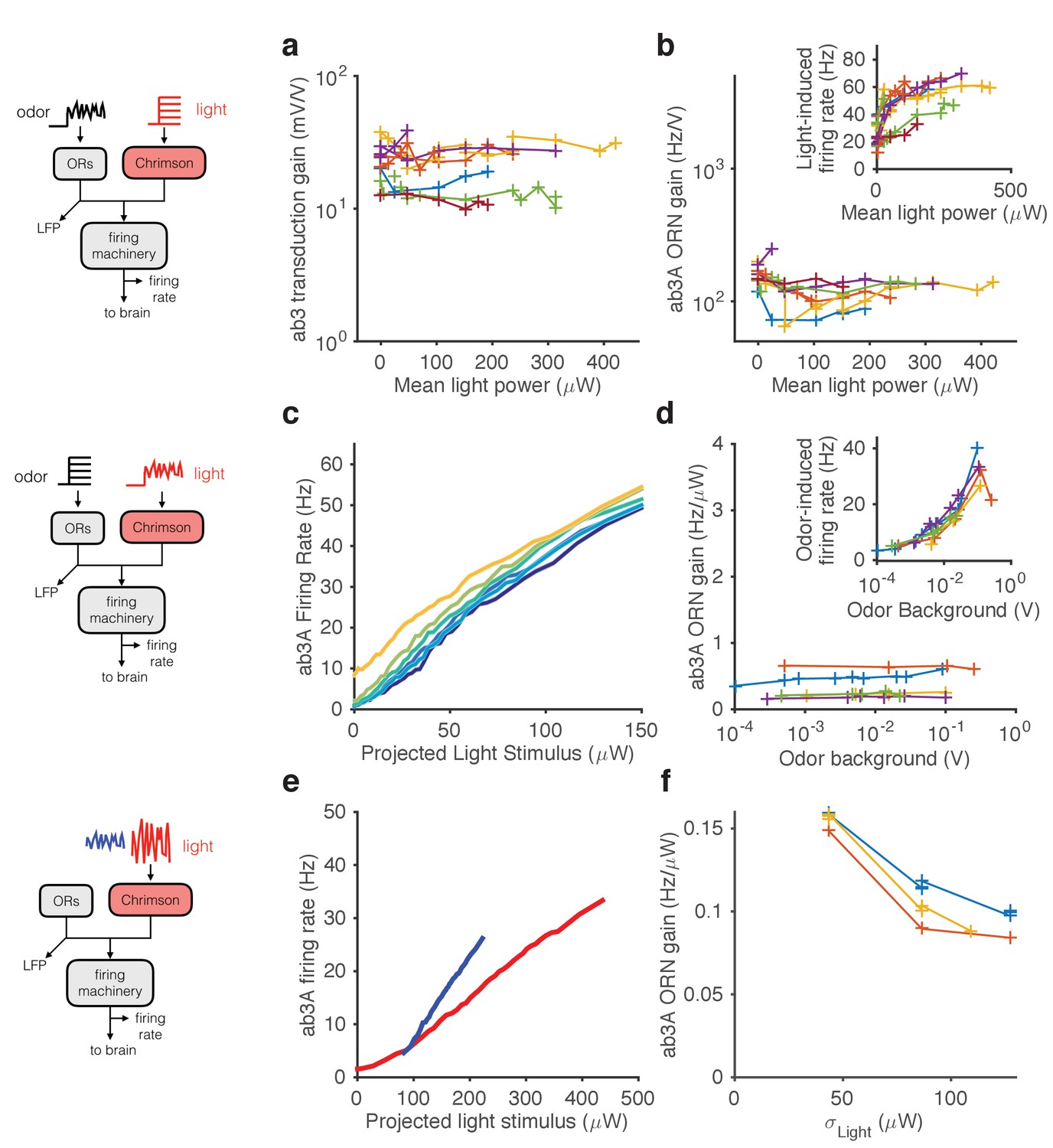 Modularity Of Gain Control Revealed By Optogenetic Stimulation