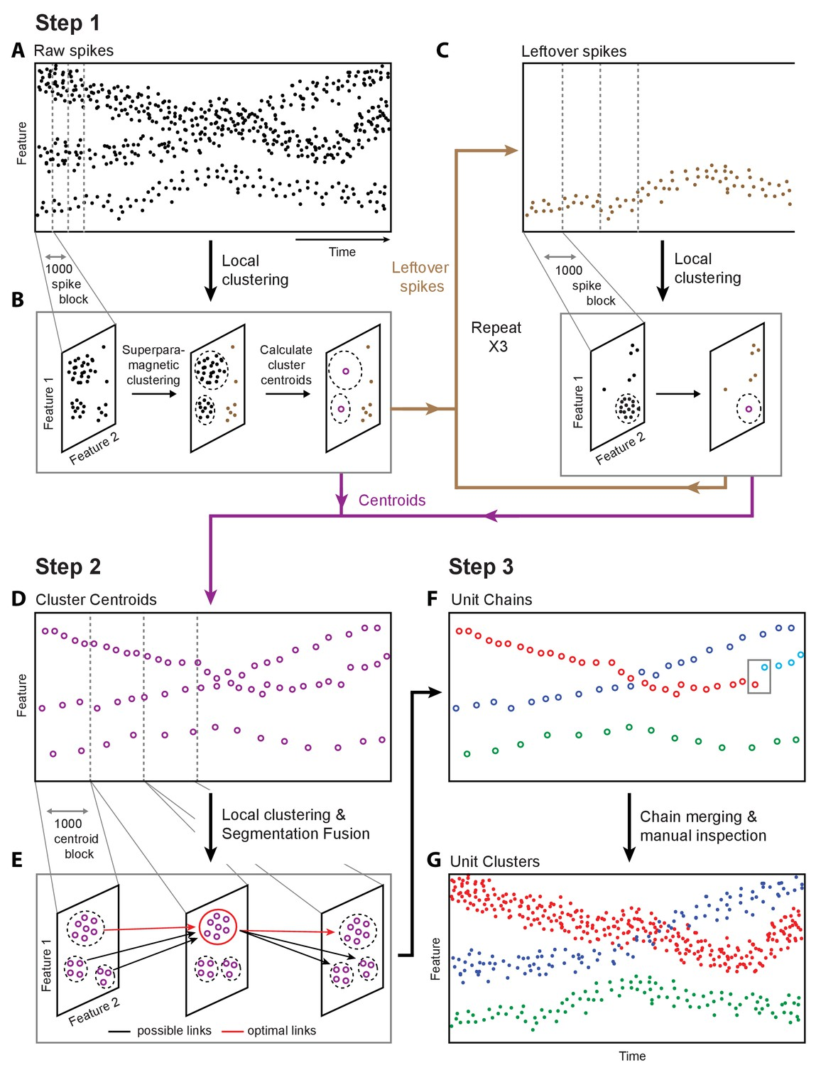 Automated Long Term Recording And Analysis Of Neural Activity In