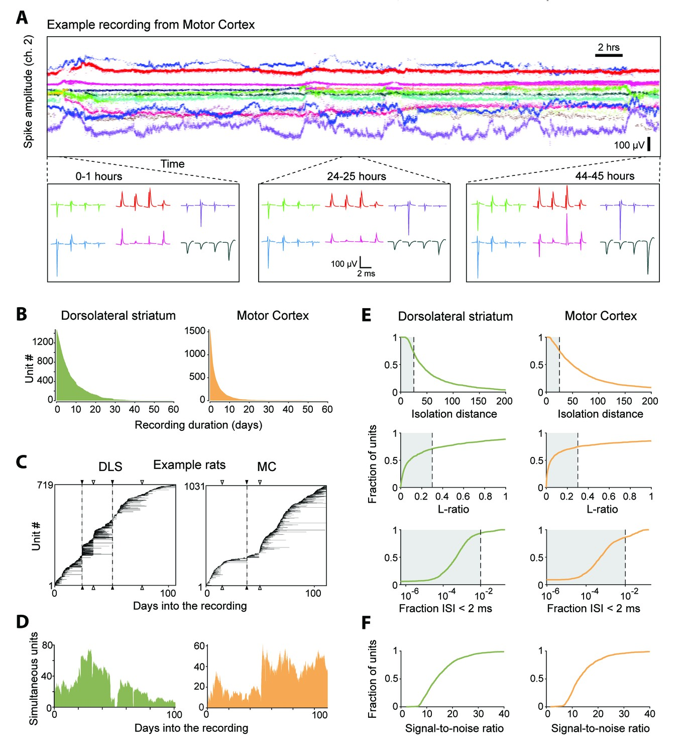 Automated Long Term Recording And Analysis Of Neural Activity In The 25l Motor Data Sensor Heating Oxygen Circuit Diagram Single Units Isolated Tracked From Continuous Months Recordings Made Dorsolateral Striatum Dls Cortex Mc Behaving Rats