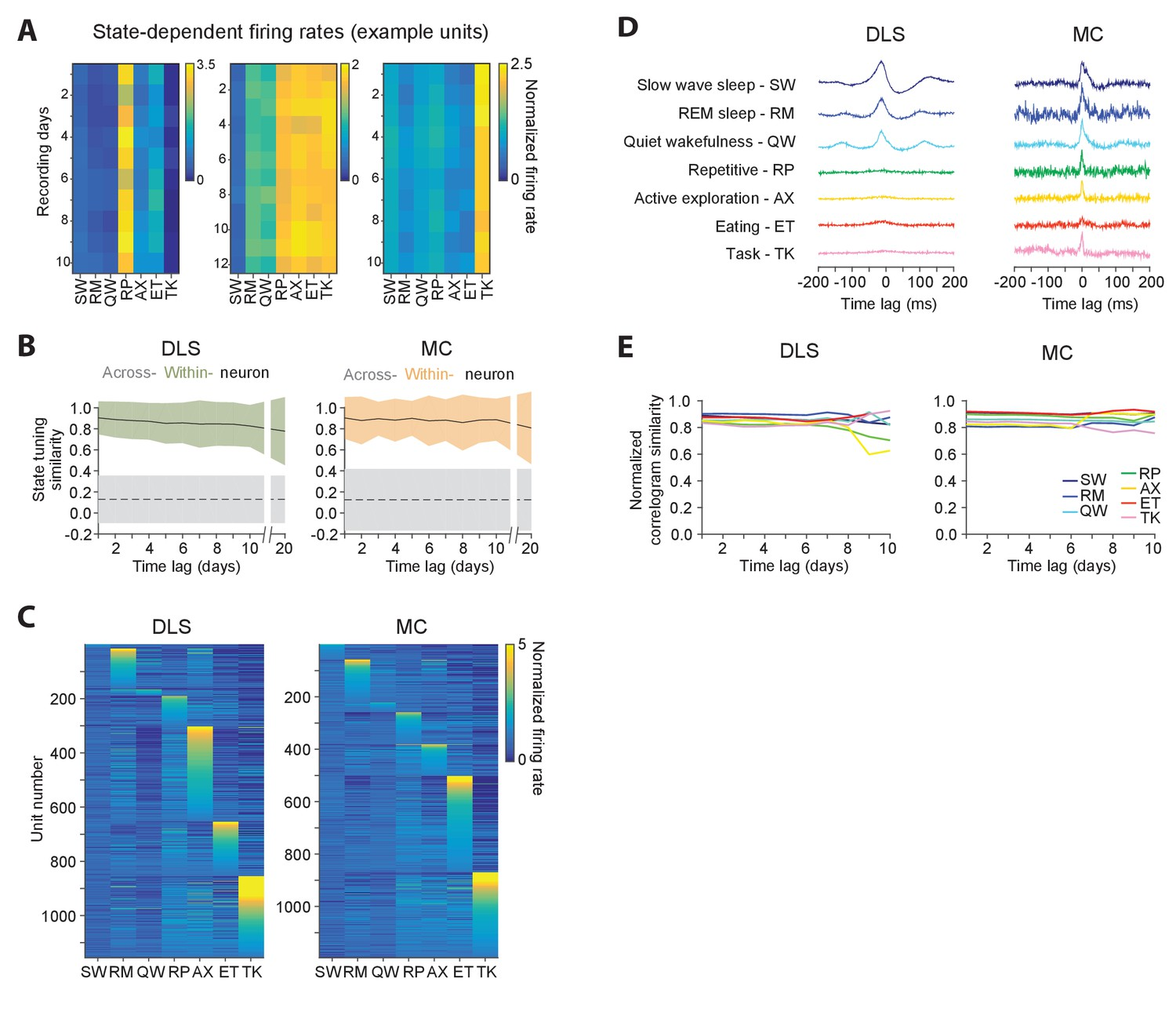Automated long-term recording and analysis of neural activity in