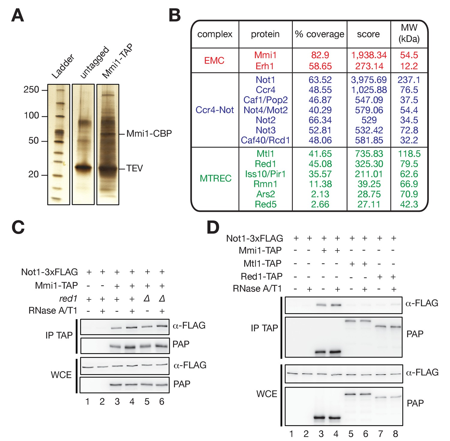 Figures And Data In Ubiquitination Dependent Control Of Sexual