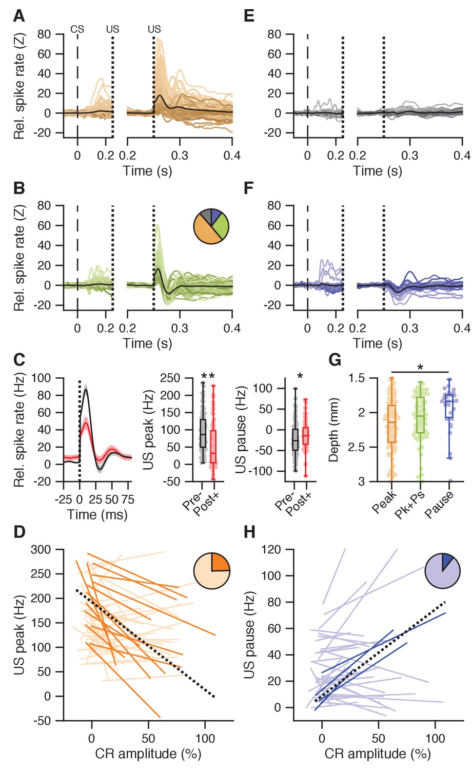 Dynamic modulation of activity in cerebellar nuclei neurons