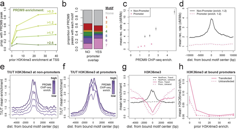 A map of human PRDM9 binding provides evidence for novel behaviors