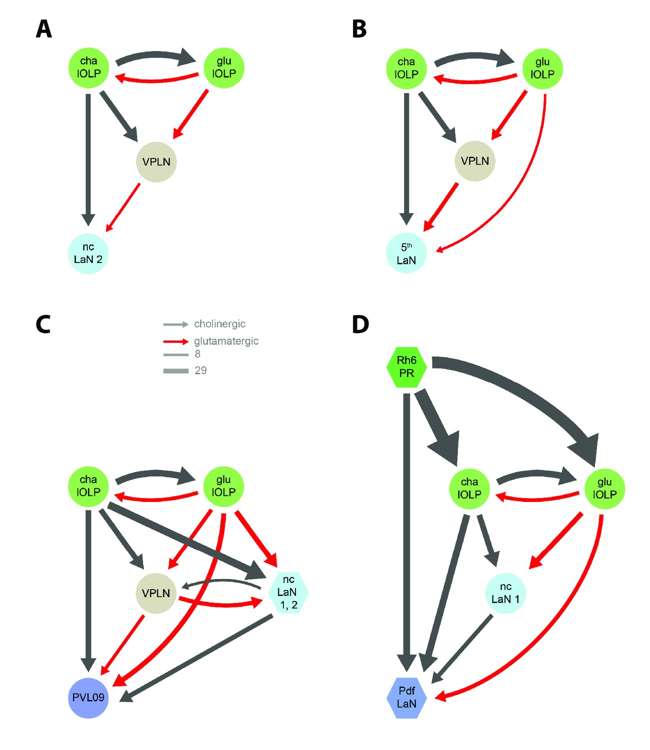 Organization Of The Drosophila Larval Visual Circuit Elife If You Are Looking For Formal Wiring Diagram Network Motifs Nc Lan 2 5th Pvl09 And Pdf Lans