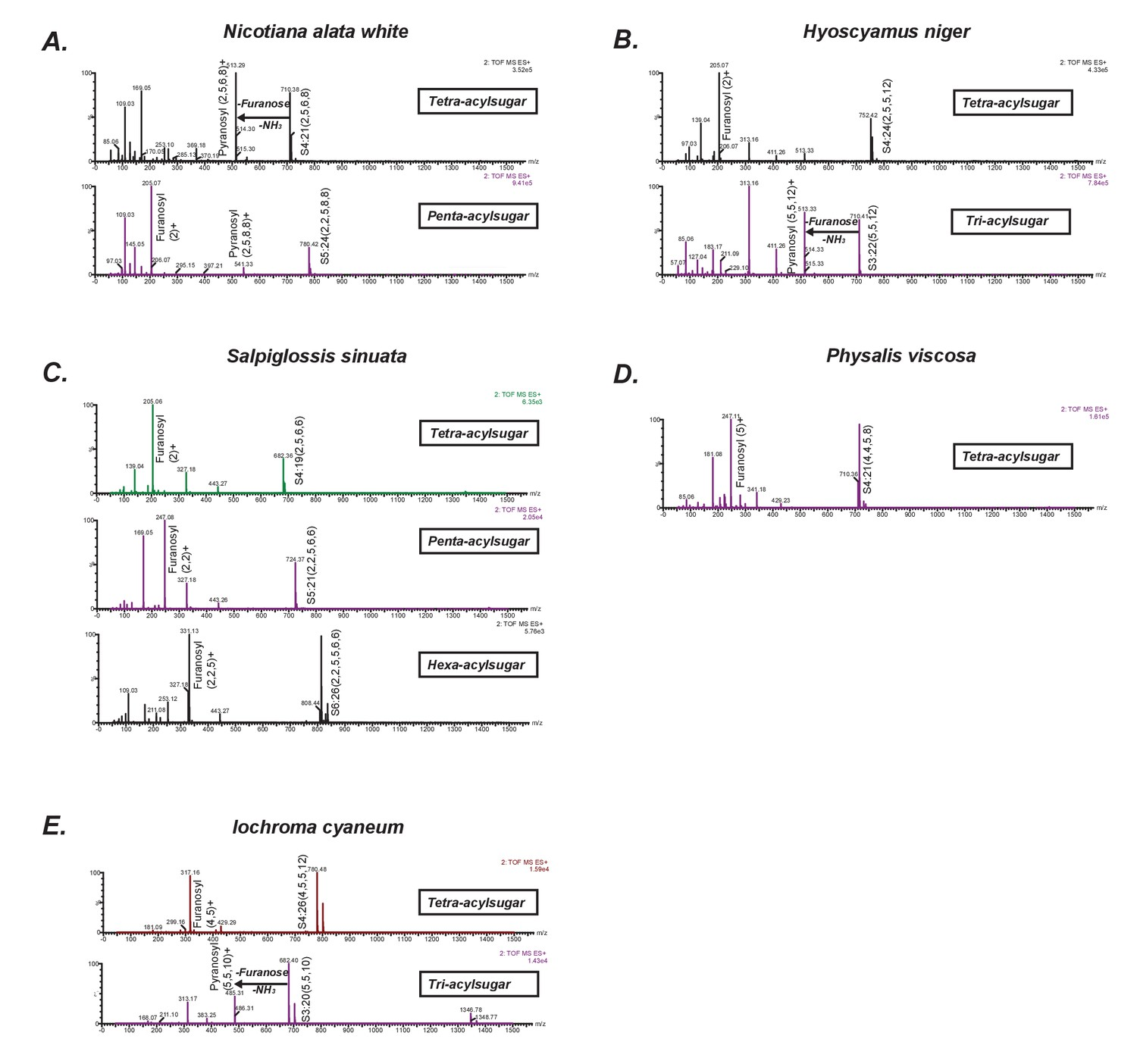 Evolutionary routes to biochemical innovation revealed by