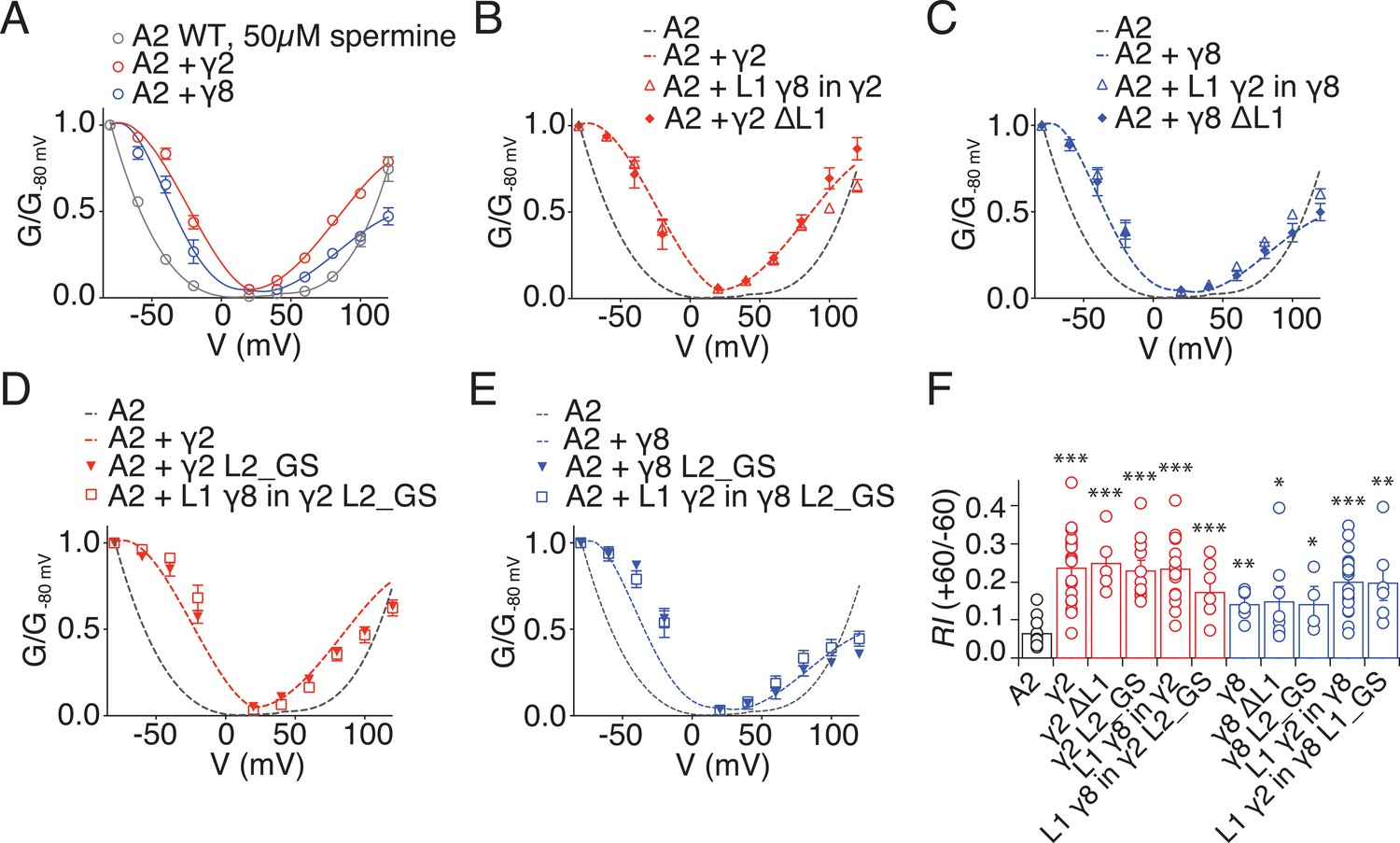 Control of AMPA receptor activity by the extracellular loops