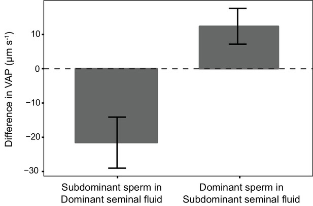 Sperm Competition Risk Drives Rapid Ejaculate Adjustments -6713