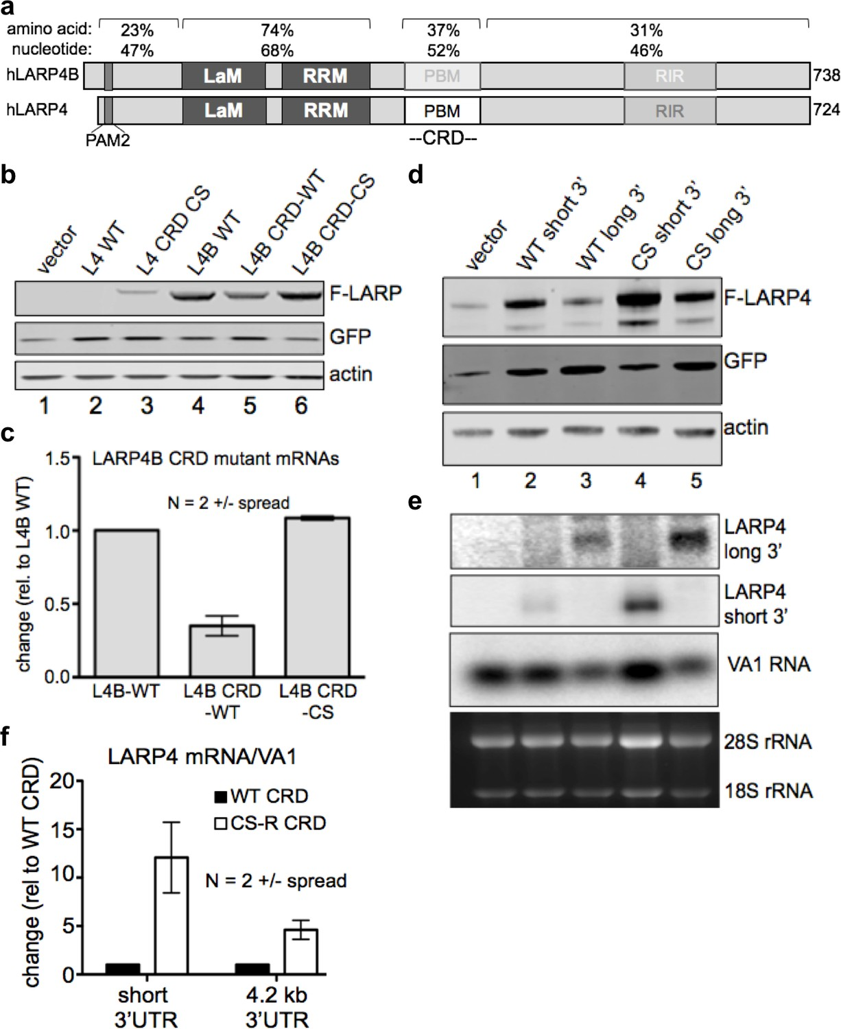Larp4 Mrna Codon Trna Match Contributes To Activity For 365 Gtc Wiring Diagram The Crd Confers Instability When Transferred A Of High Expression Level And In Context Its Natural Regulatory 3 Utr