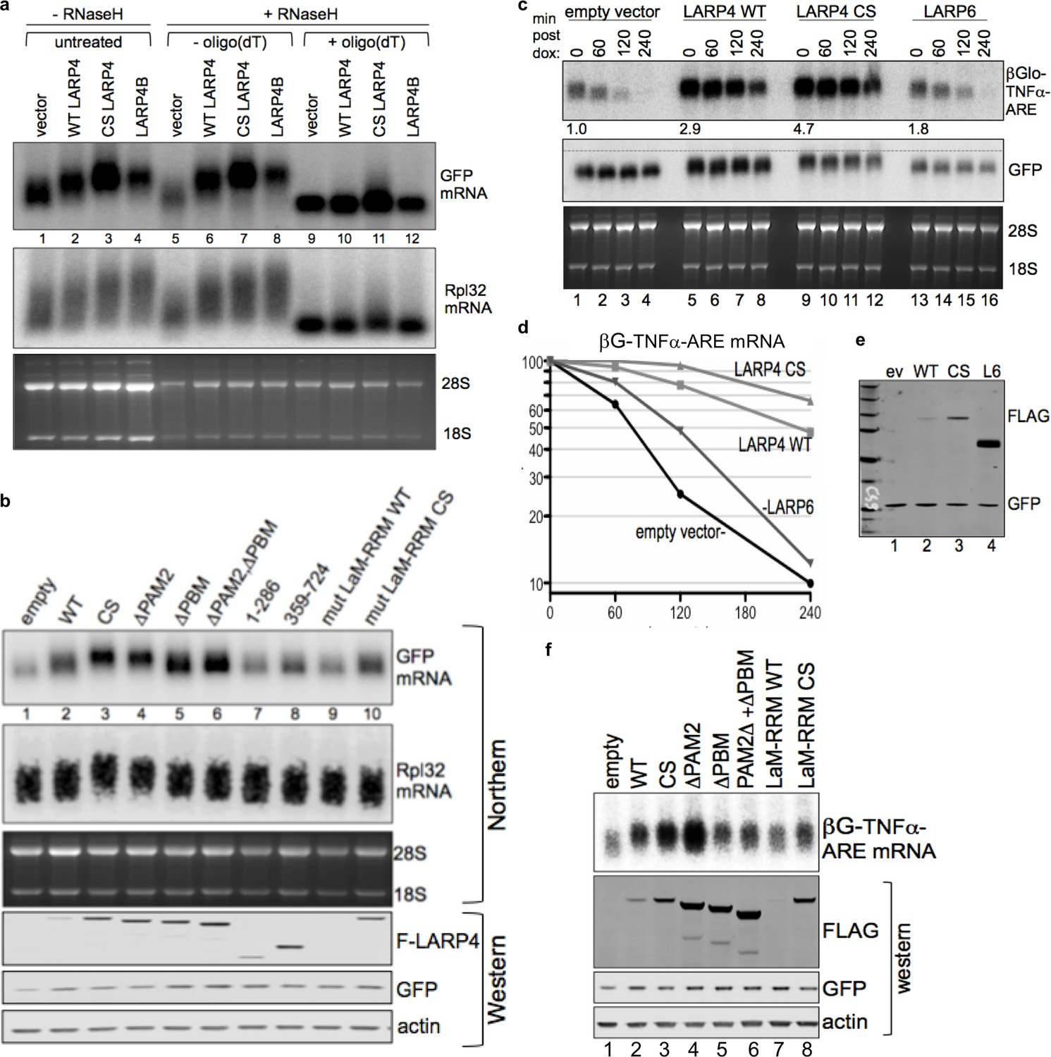 Larp4 Mrna Codon Trna Match Contributes To Activity For 365 Gtc Wiring Diagram Crd Mediated Increase In Leads Heterologous 3 Pat Lengthening And Stabilization Dependent On Its Pabp Rna Interaction Domains