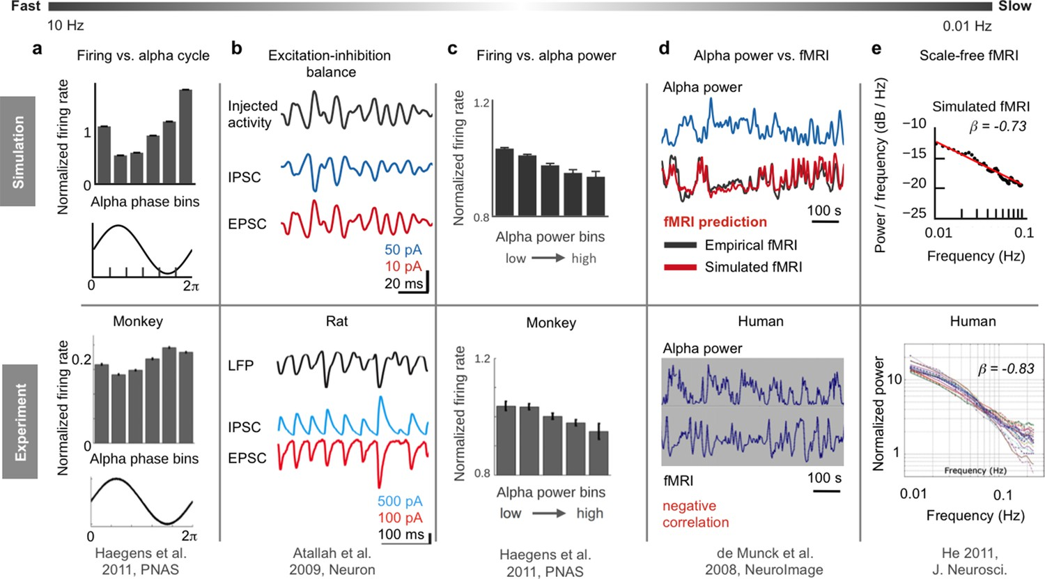 Inferring Multi Scale Neural Mechanisms With Brain Network Modelling Fm Demodulation Rlc Circuits Applet Overview Of Six Empirical Phenomena On Different Temporal Scales Reproduced By The Hybrid Model