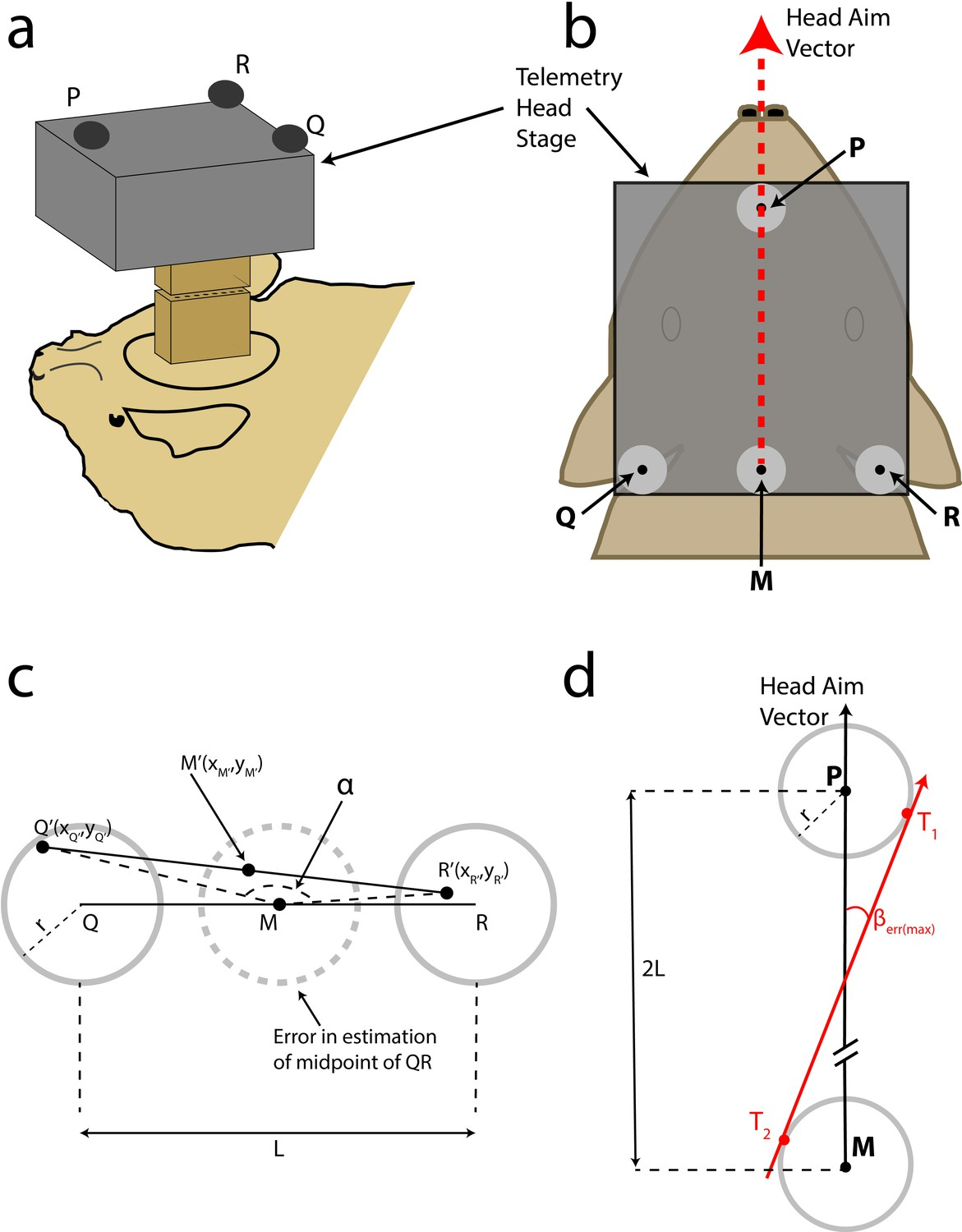 Dynamic Representation Of 3d Auditory Space In The Midbrain Atx Power Supply Restructuring Full Outage With Off Circuit Head Aim Reconstruction
