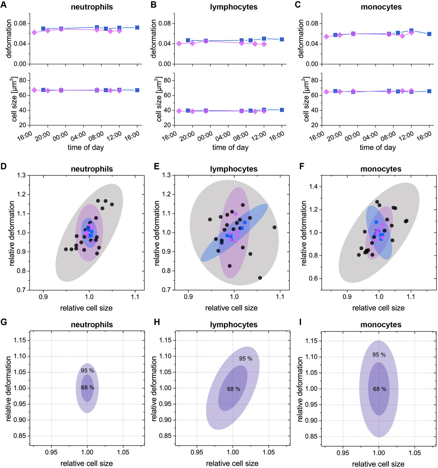 Detection Of Human Disease Conditions By Single Cell Morpho White Blood Labeled Diagram When Cells Invade Intra Day Variation Deformation And Size