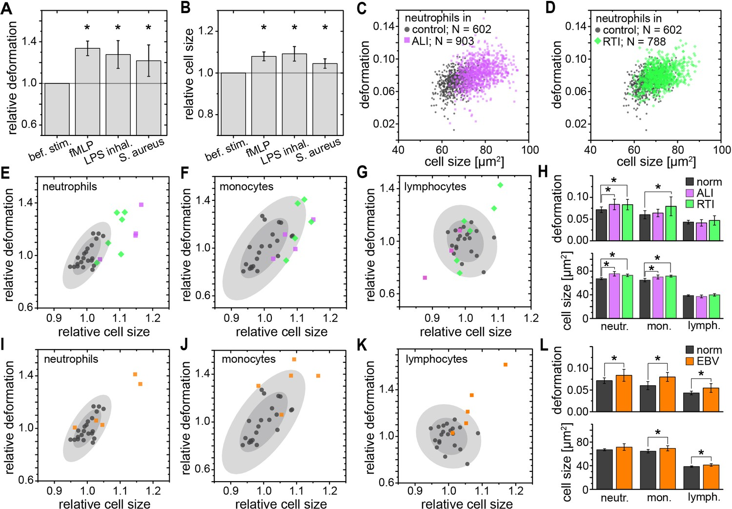Detection of human disease conditions by single-cell morpho