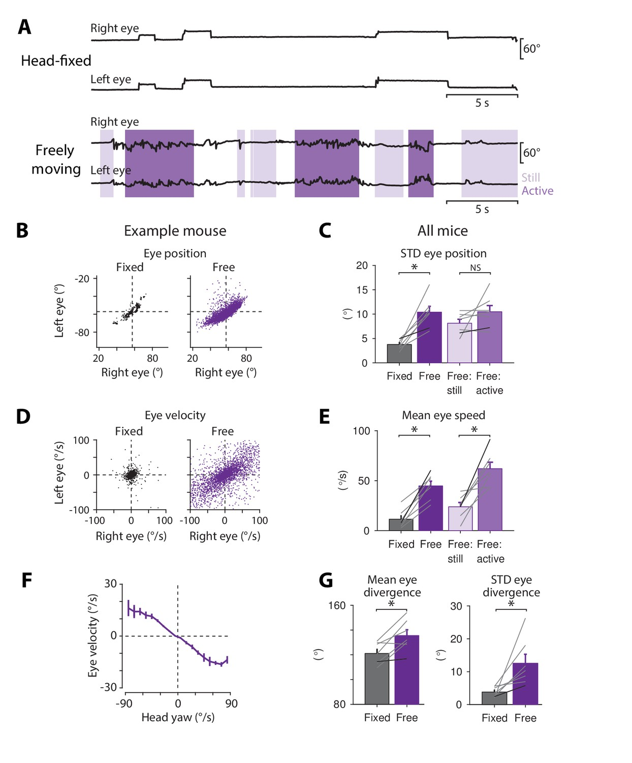 Magnetic Eye Tracking In Mice Elife