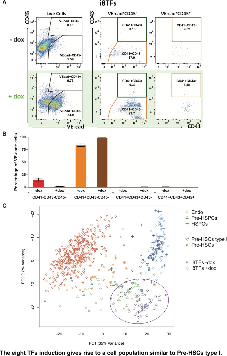 Single-cell transcriptomics reveals a new dynamical function