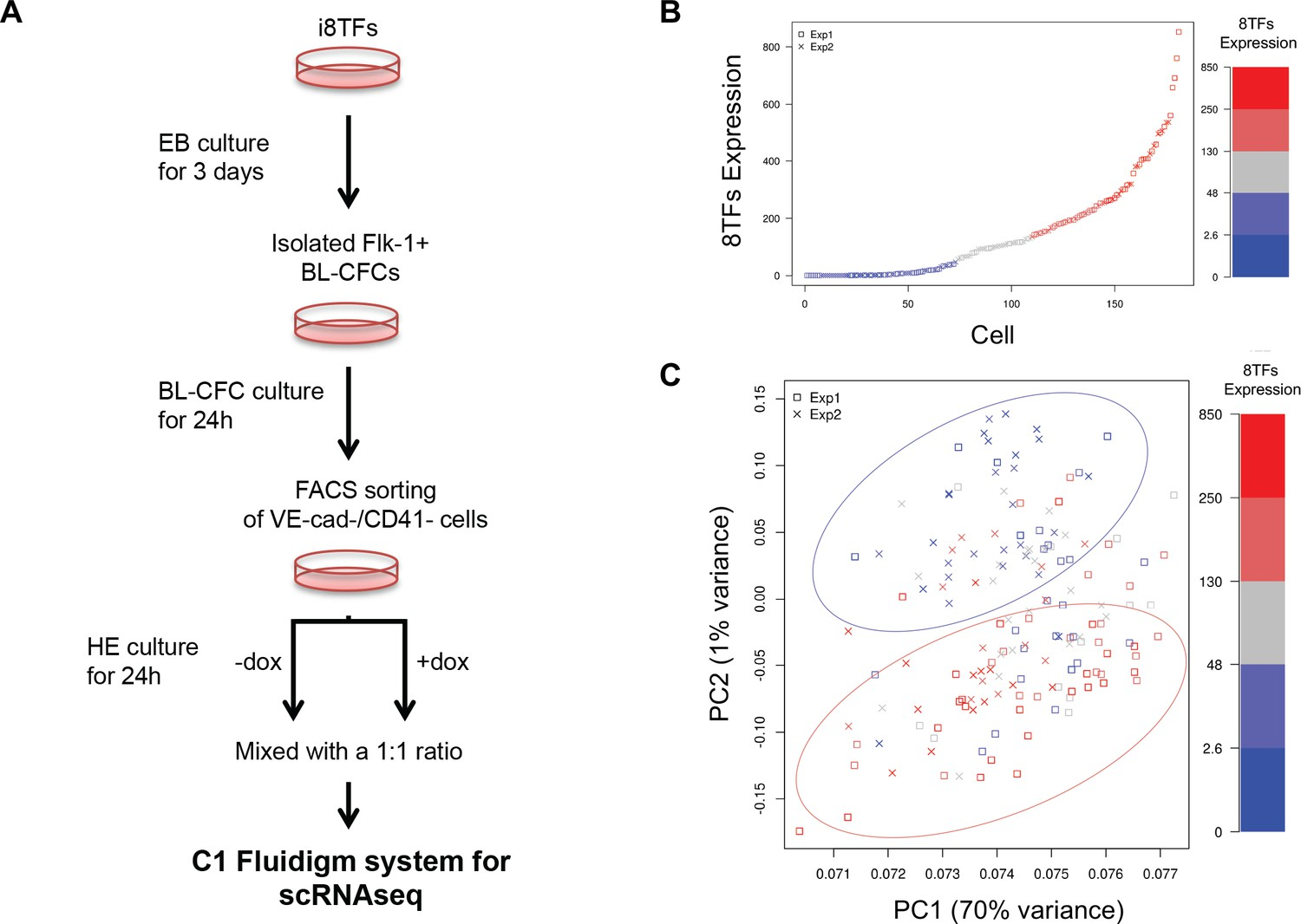 Single-cell transcriptomics reveals a new dynamical function of