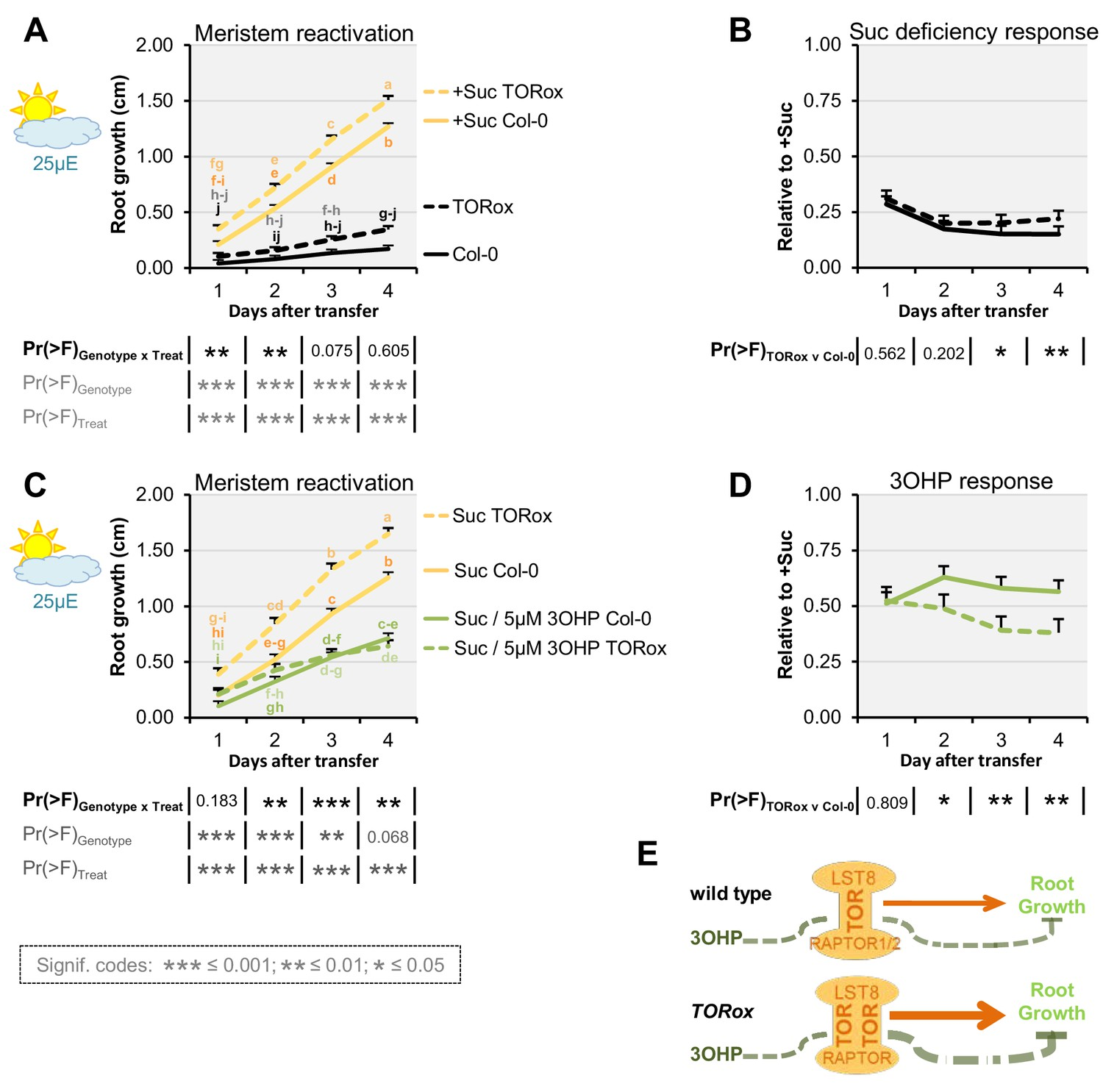 An evolutionarily young defense metabolite influences the