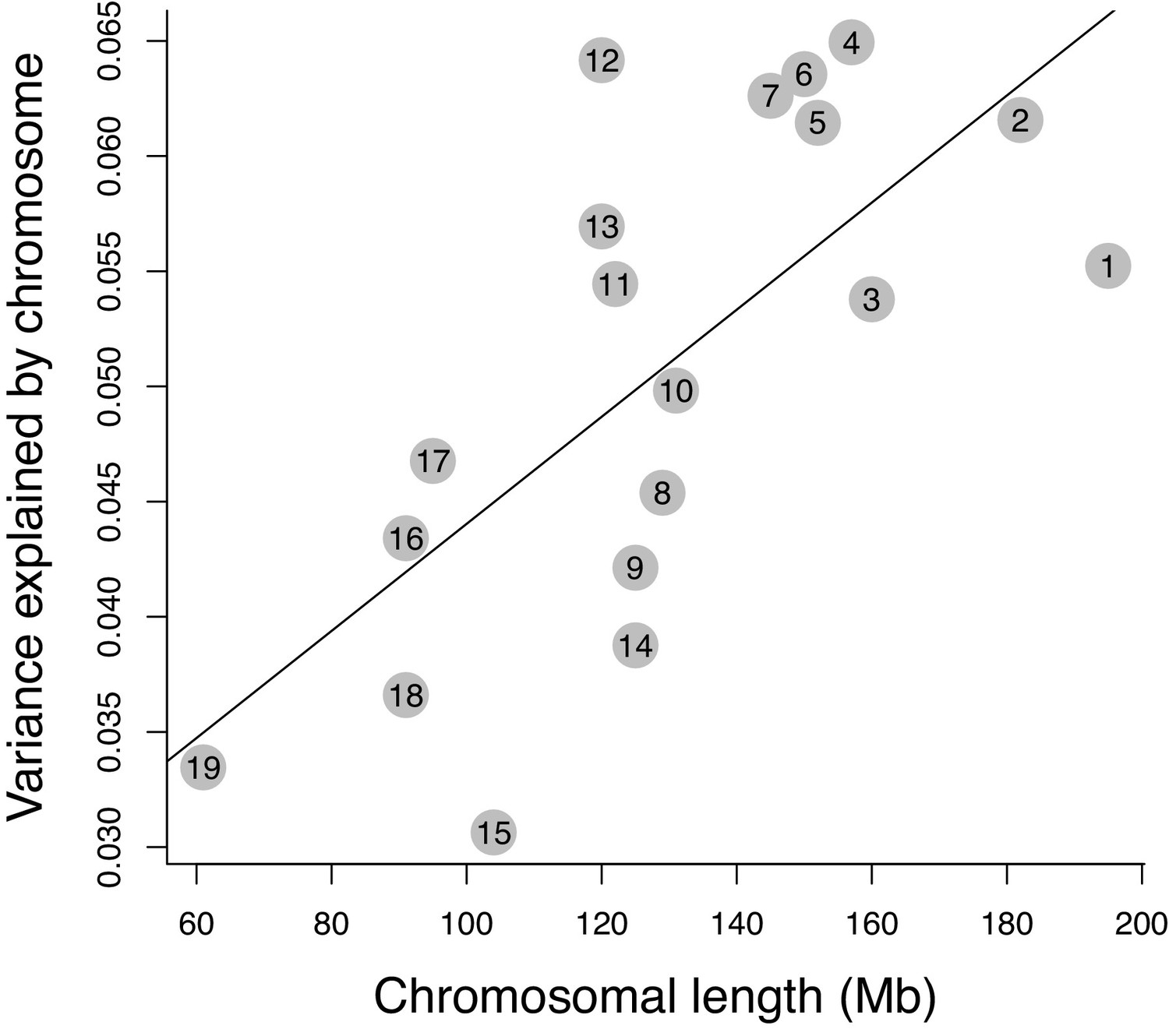 Genomic Regions Controlling Shape Variation In The First Upper Molar