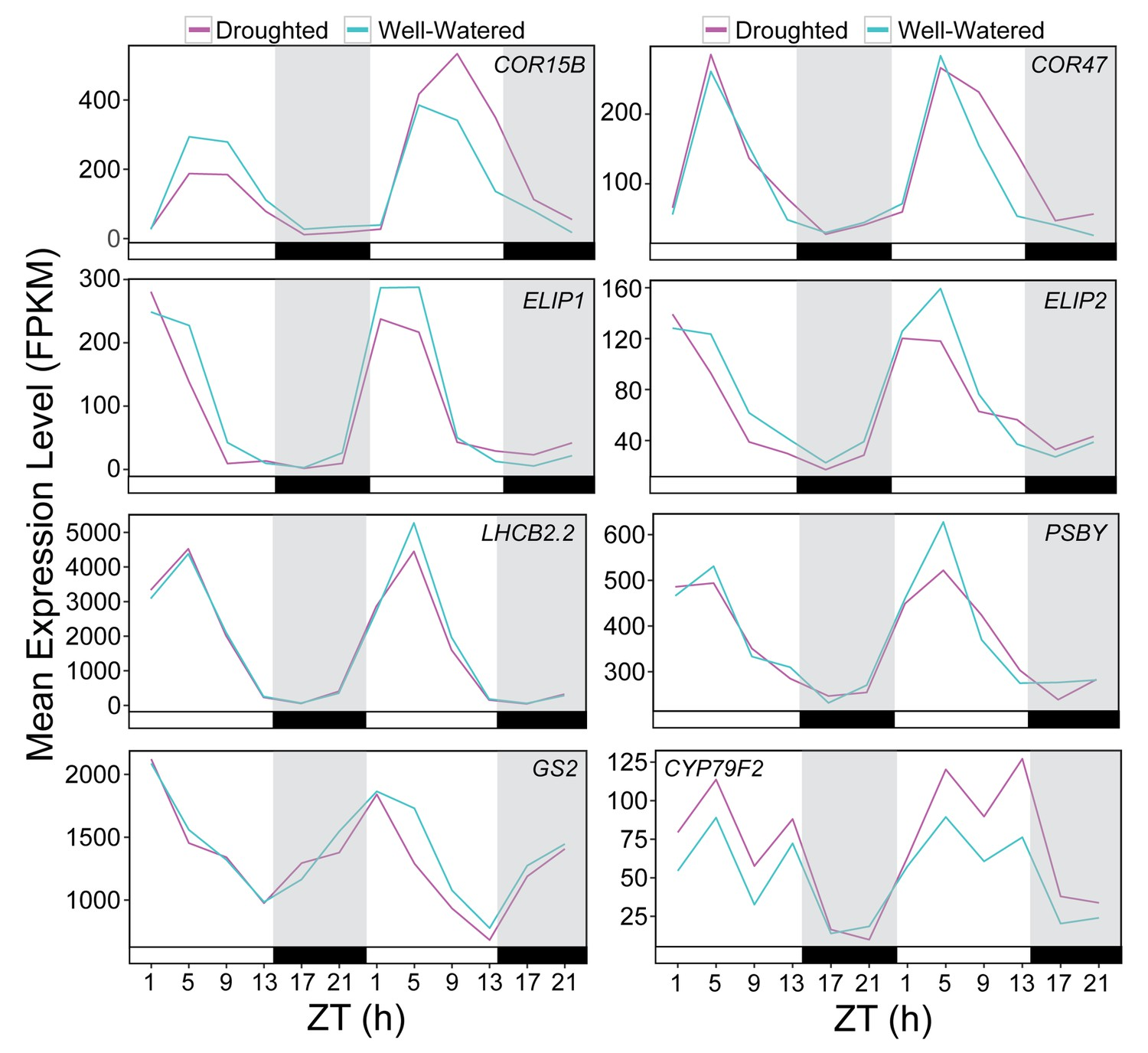 Temporal network analysis identifies early physiological and