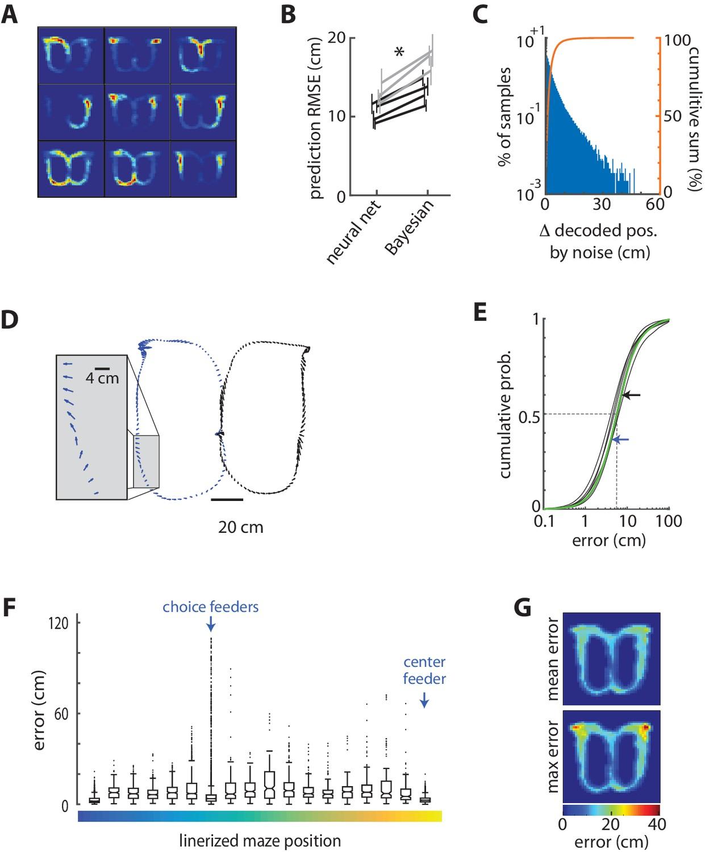 Rat Anterior Cingulate Cortex Recalls Features Of Remote Reward H 261 Block Diagram Decoding Position From Ensemble Acc Activity