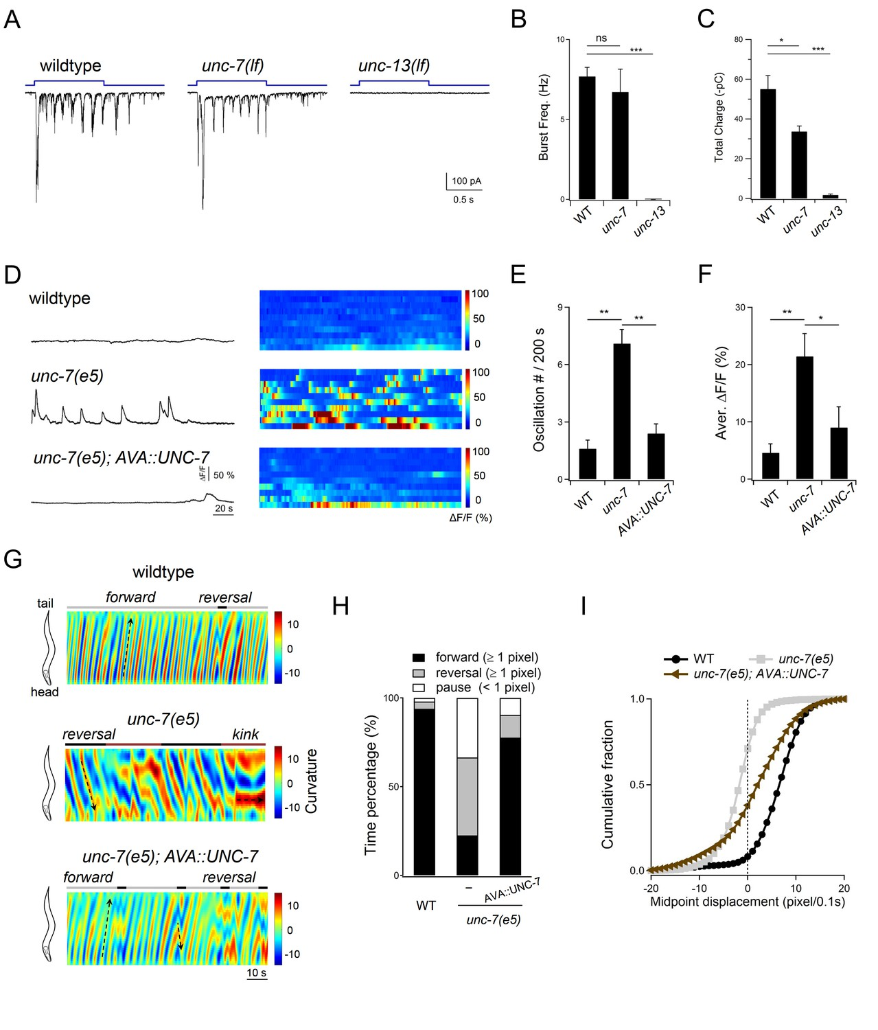 Excitatory motor neurons are local oscillators for backward ... on