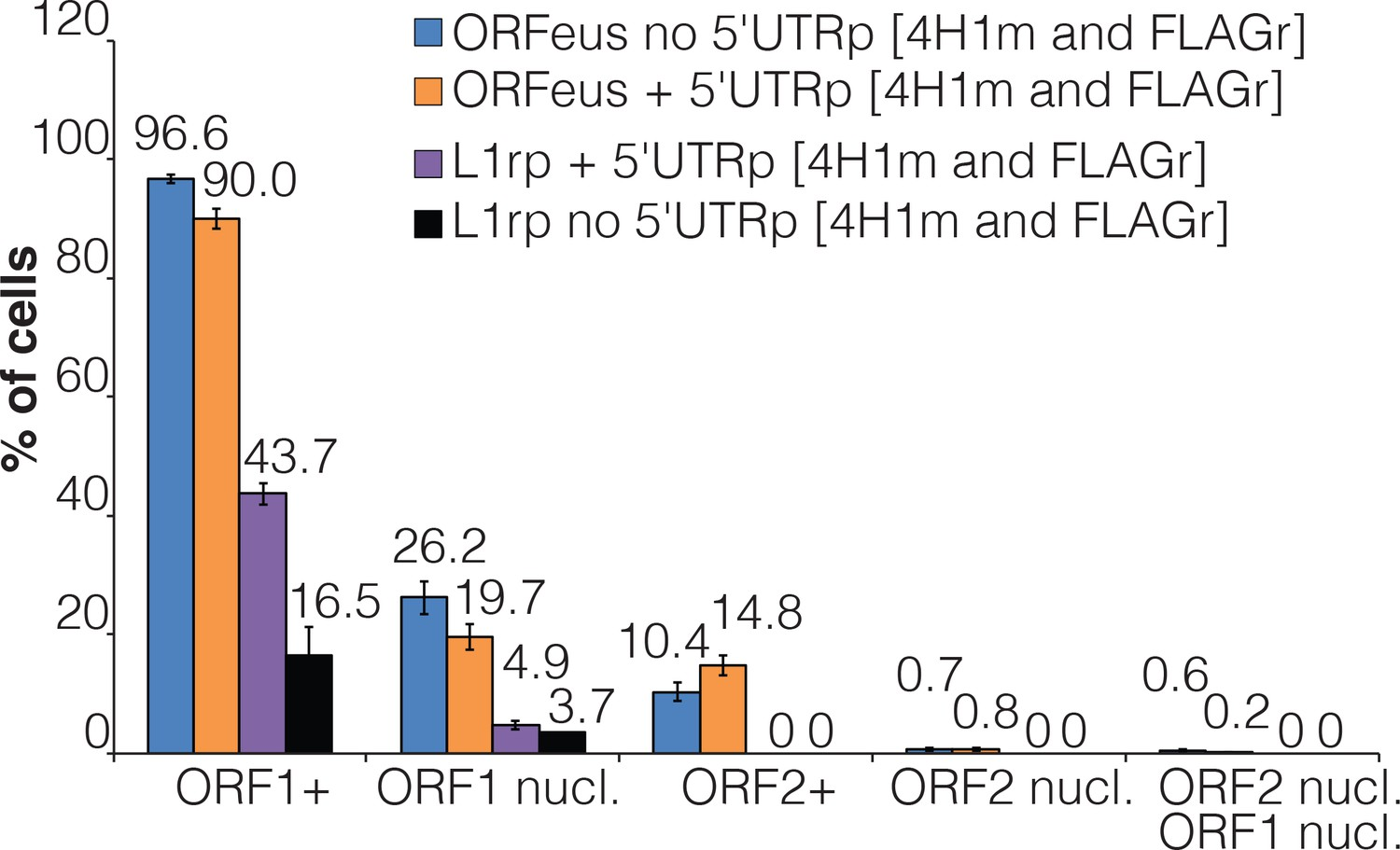 LINE-1 protein localization and functional dynamics during