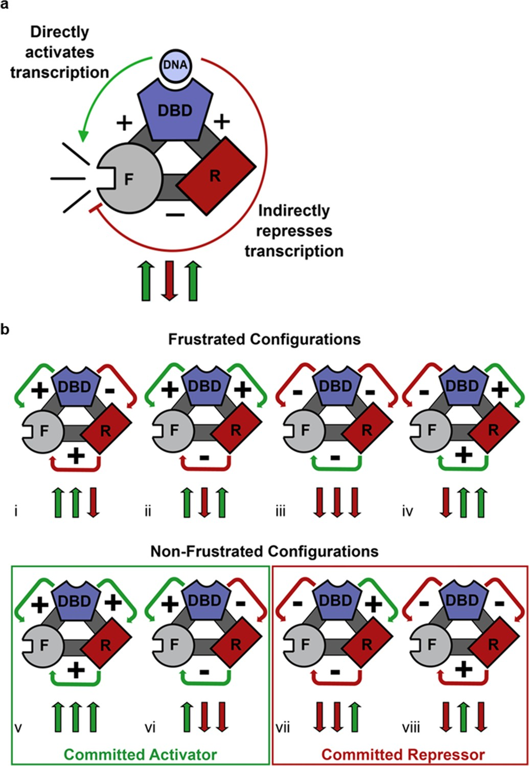 Genetically Tunable Frustration Controls Allostery In An Clipart Search Results For Quotcircuitquot Competing Thermodynamic Coupling Gr Produces