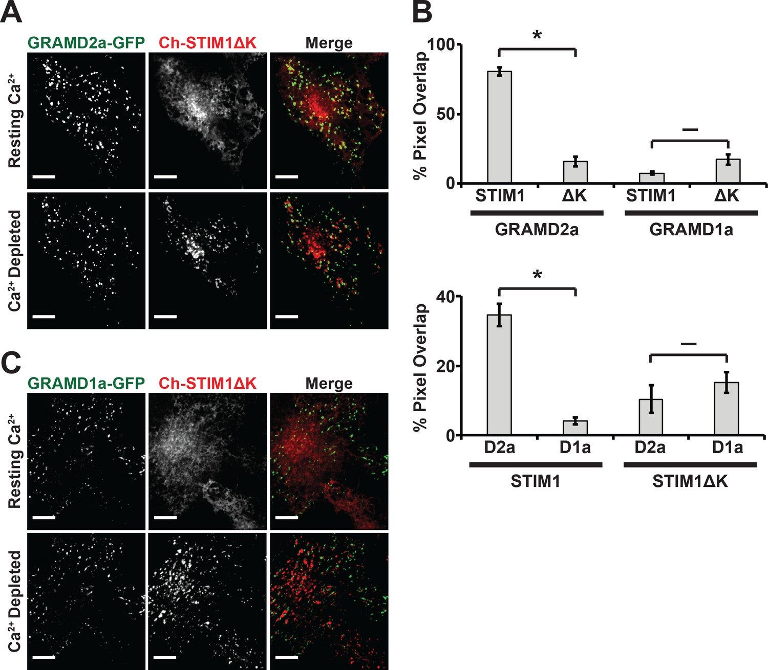Gram Domain Proteins Specialize Functionally Distinct Er Pm Contact