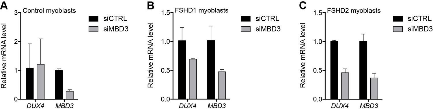 NuRD and CAF-1-mediated silencing of the D4Z4 array is